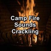 Camp Fire Sounds Crackling de Ocean Waves (1)