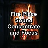 Fire Place Sound Concentrate and Focus by S.P.A