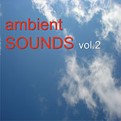 Ambient Sounds Vol.2 de Various Artists