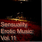 Sensuality Erotic Music: Vol.11 de Various Artists