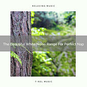 The Beautiful White Noise Range For Perfect Nap by White Noise Sleep Therapy