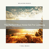 The Perfect Blue Noise Set For Learning by White Noise Sleep Therapy