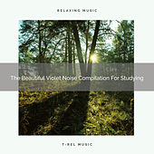 The Beautiful Violet Noise Compilation For Studying by White Noise Sleep Therapy