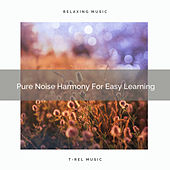 Pure Noise Harmony For Easy Learning by White Noise Sleep Therapy