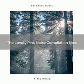 The Lovely Pink Noise Compilation Now by White Noise Sleep Therapy