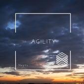 Agility van Neptis
