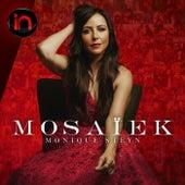 Mosaïek - Inbly Konsert (Live) de Monique Steyn
