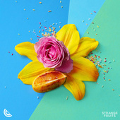 Everyday (Drinking Wine) by La Fets