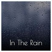 In the Rain by Miss Tess-X, Jaques Raupe, D-Mind