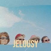 Jelousy von Carmen Miranda, Doc Watson, The Blue Diamonds, Johnny Rivers, Renato Carosone, Nina de la Puebla, Carlos Puebla, Pio Leyva, Trio Siboney, Jose Guardiola