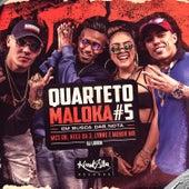 Quarteto Maloka #5 - Em Busca das Nota de Vários Artistas