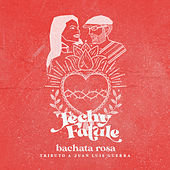 Bachata Rosa (Tributo a Juan Luis Guerra) de Techy Fatule