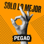 Solo Lo Mejor: Pegao by Various Artists