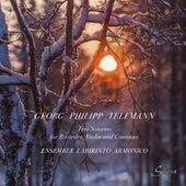 Telemann: Trio Sonatas de Ensemble Labirinto Armonico
