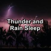 Thunder and Rain Sleep by Rain Sounds and White Noise