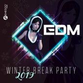 EDM Winter Break Party 2019 von Various Artists