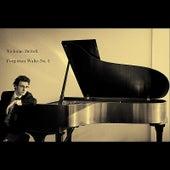 Forgotten Waltz No. 2 by Nicholas Britell
