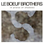 In Praise of Shadows by Le Boeuf Brothers