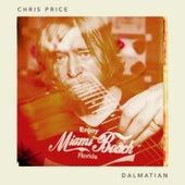 Dalmatian by Chris Price