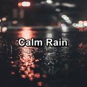 Calm Rain de Lightning Thunder and Rain Storm