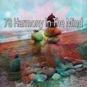 78 Harmony in the Mind de Meditation Spa