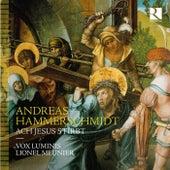 Andreas Hammerschmidt: Ach Jesus stirbt von Lionel Meunier