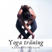 Yoga träning: Känna intuition von Blandade Artister