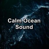 Calm Ocean Sound de Rain Sounds (2)