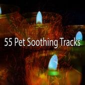 55 Pet Soothing Tracks de Meditación Música Ambiente