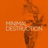 Minimal Destruction de Various Artists