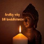 Andlig väg till buddhismen von Blandade Artister
