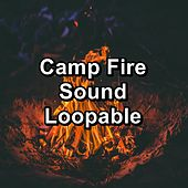 Camp Fire Sound Loopable de Ocean Sleeping Baby