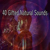 40 Gifted Natural Sounds von Yoga