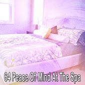 64 Peace of Mind at the Spa de Sleepicious