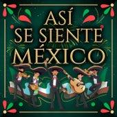 ASÍ SE SIENTE MÉXICO by Various Artists