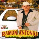El Zancudo Boludo de Ramon Antonio