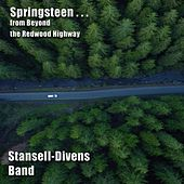 Springsteen... from Beyond the Redwood Highway by Stansell - Divens Band
