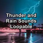Thunder and Rain Sounds Loopable by Baby Sleep