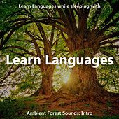 Learn Languages While Sleeping with Ambient Forest Sounds: Intro de The Earbookers