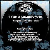 1 Year of Natural Rhythm by Various Artists