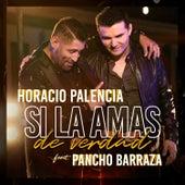 Si la Amas de Verdad de Horacio Palencia