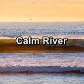 Calm River von Delta Waves