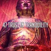 47 Trust in Tranquility von Yoga