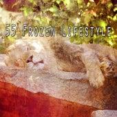 55 Frozen Lifestyle von Rockabye Lullaby