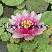 78 Thought in Natural Surroundings by Classical Study Music (1)
