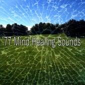 77 Mind Healing Sounds van Meditation Spa