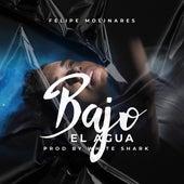 Bajo el Agua de Felipe Molinares