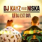 Le DJ est bon de DJ Kayz