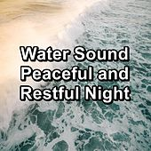 Water Sound Peaceful and Restful Night di Lullabies for Deep Meditation