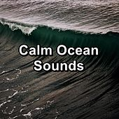Calm Ocean Sounds by Calm Music